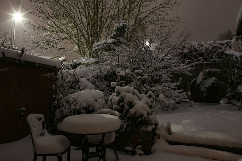 In the wee small hours the snow slowly claimed the garden. I love nights like these. Long Exposure Snow Night Garden Seat Plant Chair Tree Absence Nature Snow No People Table Empty Cold Temperature Winter Illuminated Night Outdoors