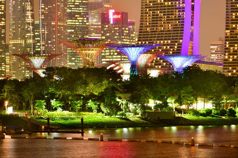 Supertree in Singapore in night time. Supertree is famous spot for traveler in Singapore city. Night Lights Singapore SuperTree Architecture Building Building Exterior Built Structure City City Life Cityscape Financial District  Garden By The Bay Illuminated Nature Night No People Outdoors Park Plant Reflection River Skyscraper Tree Water Waterfront