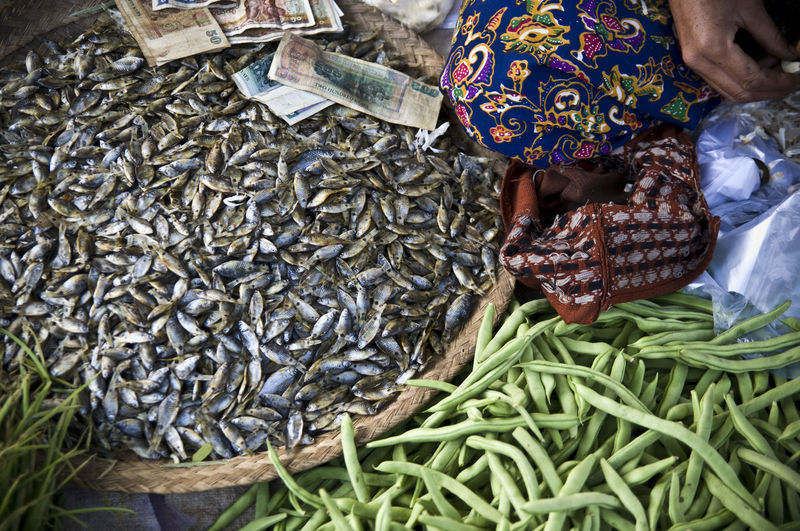 Low section of woman selling fishes and vegetables at market