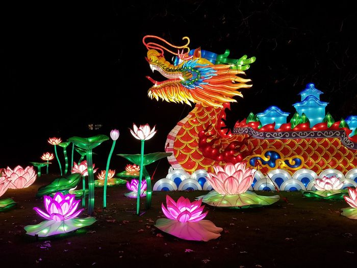 Taking Photos Zoo Antwerpen China Light Festival Dragon Dragon Multi Colored Representing Arts Culture And Entertainment