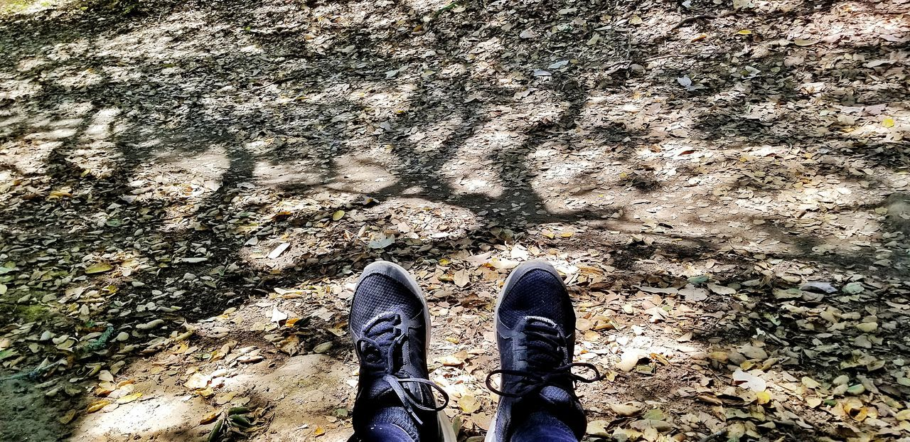 EyeEm Selects EyeEm Best Shots Eye4photography  EyeEm Nature Lover Tree Shadow Low Section Standing Human Leg Shadow Shoe Pair High Angle View Sunlight Sand Directly Above Human Feet Footwear Human Foot Personal Perspective