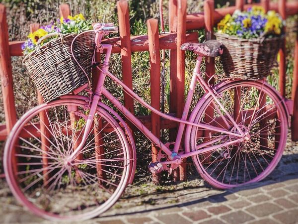 Basket Bicycle Outdoors Day Transportation No People Close-up Rostock 2017 Gravemann Outdoor Photography Happiness Standing Flowers