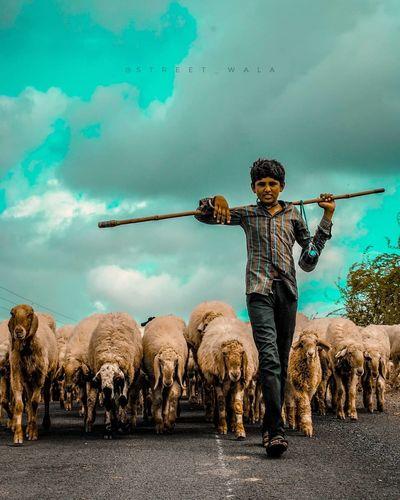 sheep femily... Child Full Length Boys Sky EyeEmNewHere
