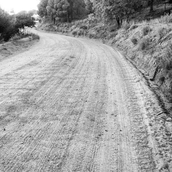 #catalunya #maresme #trail #running #trailrunning #run #sport Running Catalunya Sport Run Trail Trailrunning Maresme