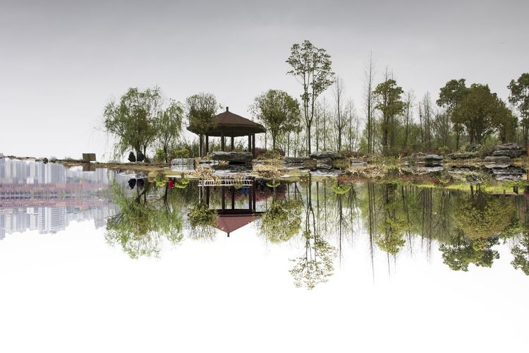 Water Reflection Tree Lake Nature Reflection Lake No People Outdoors Day Sky Architecture Sea Flower Springtime Freshness Beauty In Nature Reflection Mirror Urban Skyline Mirorr Park