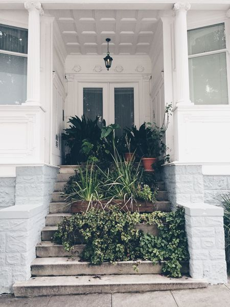 Architecture Building Exterior Built Structure Day Door Entry Growth House Nature No People Open Door Outdoors Plant Potted Plant Steps