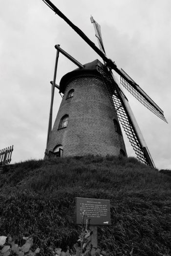 Monumental Mill B&w Netherlands Limburg Mill On A Hill Taking Pictures
