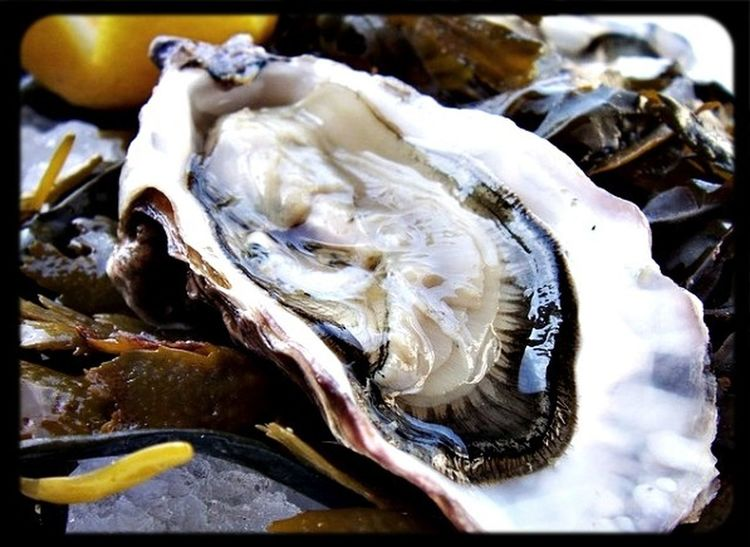 Fresh Oyster waiting for you.