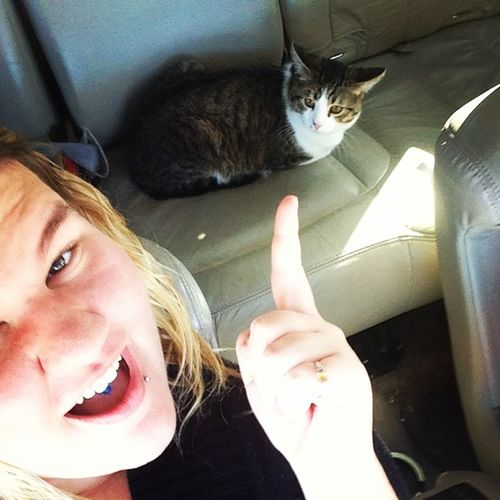 Probably the only person who takes her cat every where.. Lol Catladyprobz Cat Kitty Kitten meow mykitty lovehim jasper mybaby car ride so chill