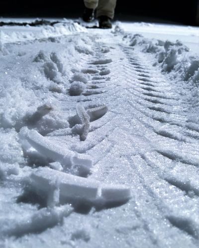 Backgrounds Car City Close-up Cold Temperature Dark Foot Frost Ground Ground Level View Legs Low Section Men Night Nightwalk One Man Only Profile Skidmarks Slippery Roads Snow Street Tire Track Traffic Vehicle Winter Adapted To The City