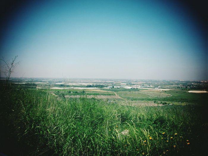 נוף איילון