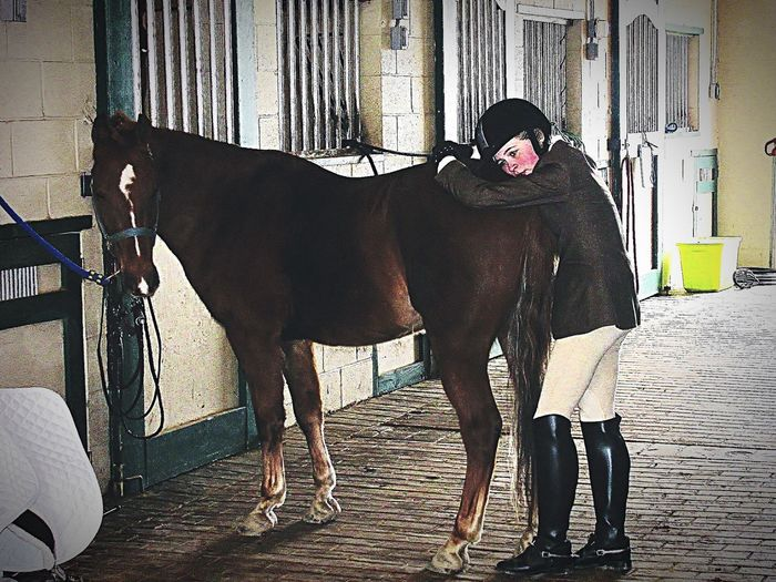 Horse trainer true love horse show horse whisper one of a kind love Louisville Kentucky a beautiful young lady companion bannon woods fairdale ky