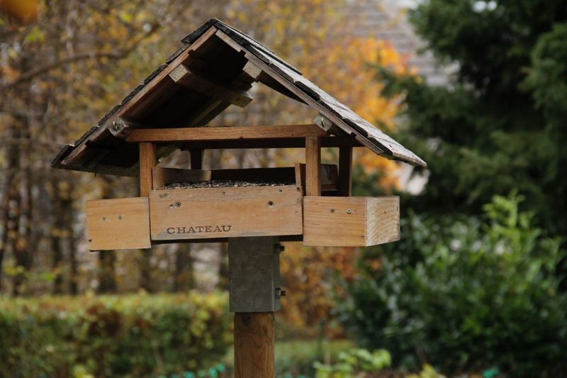 Low angle view of birdhouse on house against sky