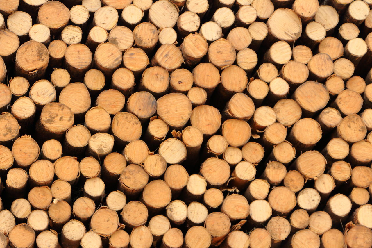 backgrounds, stack, timber, full frame, lumber industry, abundance, log, large group of objects, heap, woodpile, no people, deforestation, wood - material, close-up, forestry industry, outdoors, day, nature