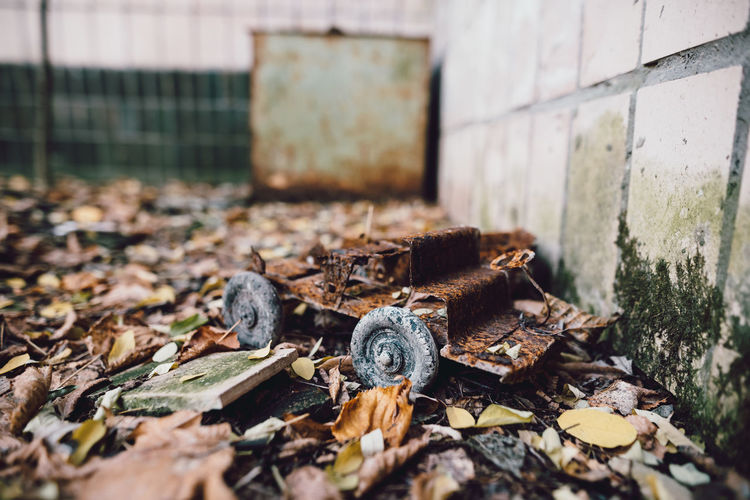 Rusty and deteriorated toy car on ground with autumn leaves in chernobyl