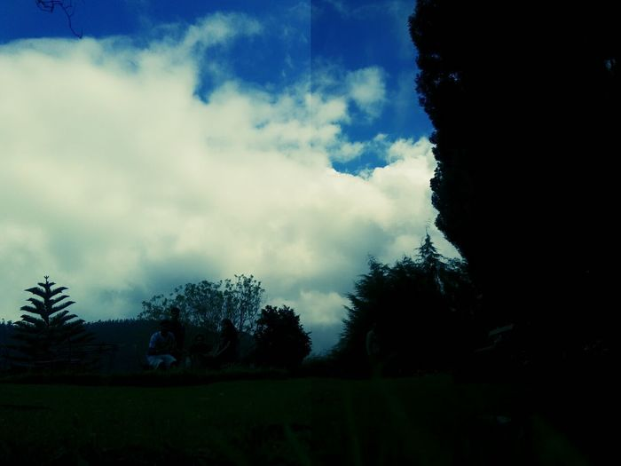 Blue Sky Clear Clouds Cloud - Sky Shadowed Nature Beautiful Sky Beauty Redefined Outdoors Sky Dark Majestic Tree