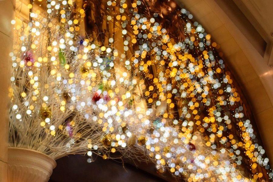 Christmas イルミネーション Colorful キラキラ Eyemphotography EyeEm Best Shots 阪急うめだ百貨店 冬 12月 Christmas Lights EyeEm Japan ファインダー越しの私の世界 Japan Photography 写真で伝えたい