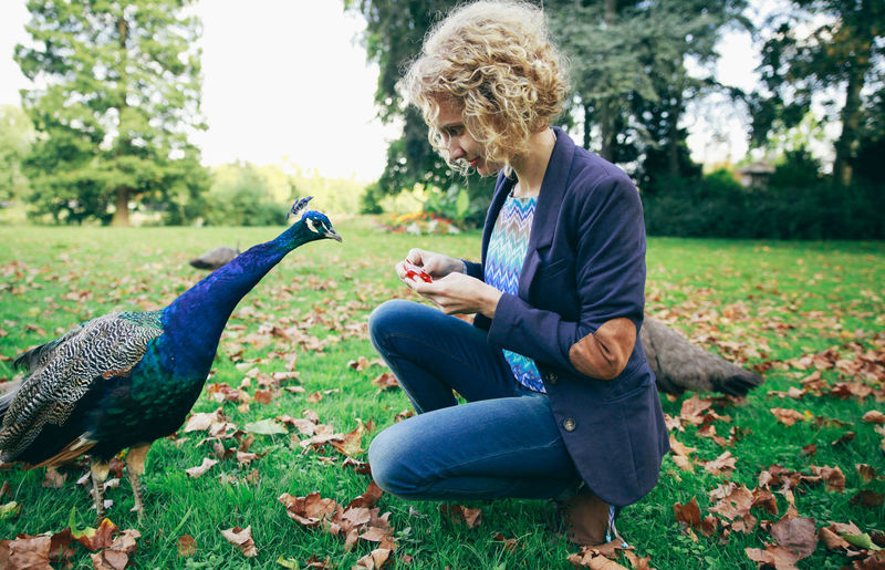 Blonde Blue Jacket Carefree Casual Clothing Curly Hair Feeding  Focus On Foreground Friendship Fun One Animal One Person Park Peacock Perspective Side View Sitting Togetherness Women Who Inspire You Natural Light Portrait People And Places Exploring Style Break The Mold Done That. Connected By Travel International Women's Day 2019