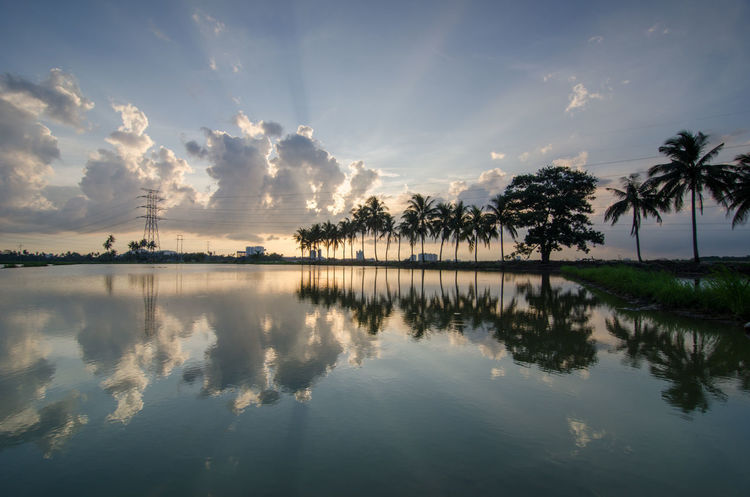 Reflection Coconut tree with amazing sun light break through the thick cloud. Ray Rays Of Light Reflection Beauty In Nature Burning Cloud Cloud - Sky Day Idyllic Lake Nature No People Outdoors Palm Tree Reflection Scenics Silhouette Sky Sunset Tranquil Scene Tranquility Tree Water Waterfront