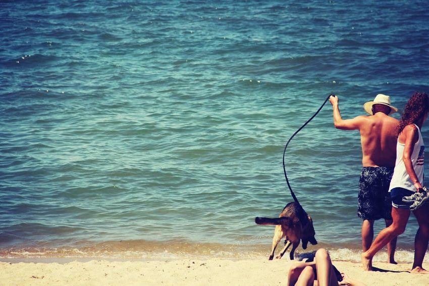run boy run to the lake !! Dogstagram AllCreaturesGreatAndSmall German Shepherd Beach Life
