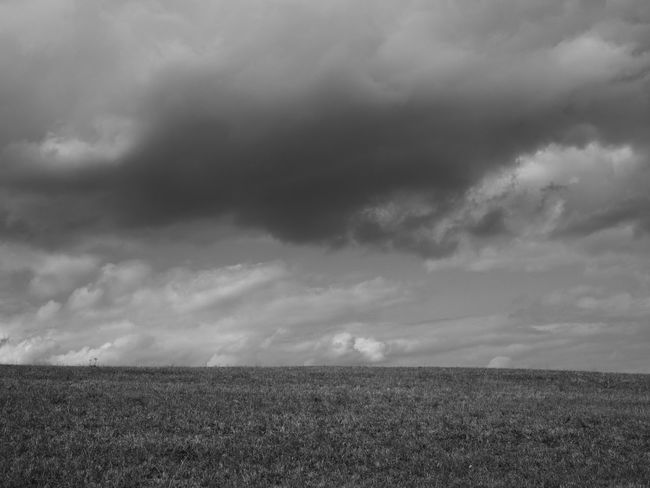 cloudy sky and meadow Cloudscape Agriculture Backgrounds Beauty In Nature Black And White Blackandwhite Cloud - Sky Clouds Clouds And Sky Cloudyday Day Field Grass Landscape Landscapes Meadow Minimal Minimalism Nature No People Outdoors Scenics Sky Tranquility Wallpaper