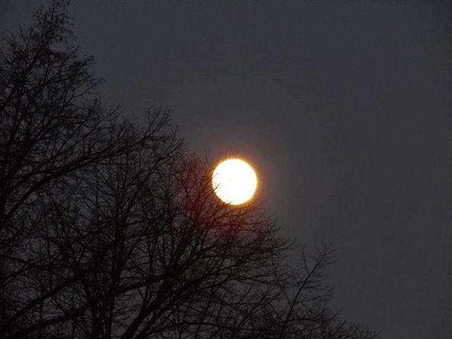 Pilnmēness 🌕 Full moon 🌕🌕🌕 Pilnmēness FoolMoon Mēness Moon Nakts Night Fotofanatics_nature_ Fotofanatics_sky_ Fotocatchers Global_ladies Naturephotography Nature Latvijasskati Latvijasdaba Latvija Latvia