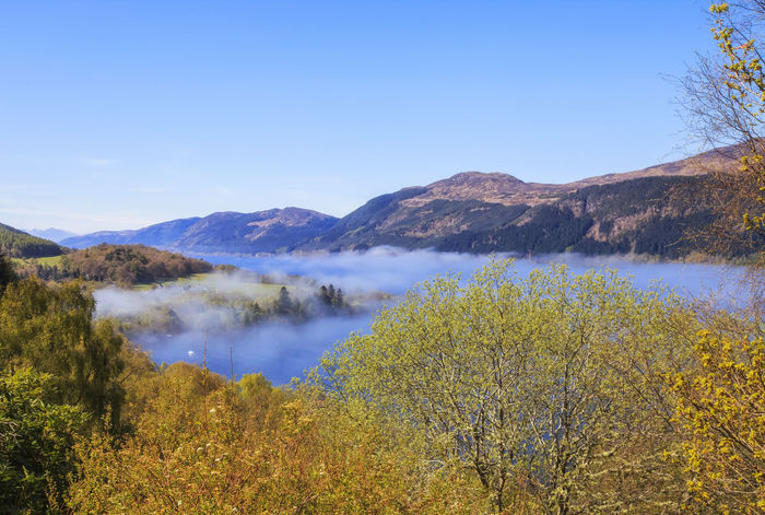 View from the hill to Loch Ness lake covered with white morning fog over water, Scotland, UK Arrival Beauty In Nature Blue Day Evergreen Tree Fog Fog Over Water Lake Landscape Loch  Loch Ness Lochness Mountain Natural Parkland Nature Ness No People Outdoors Pine Tree Pine Woodland Scotland Sky Tree Uk Water
