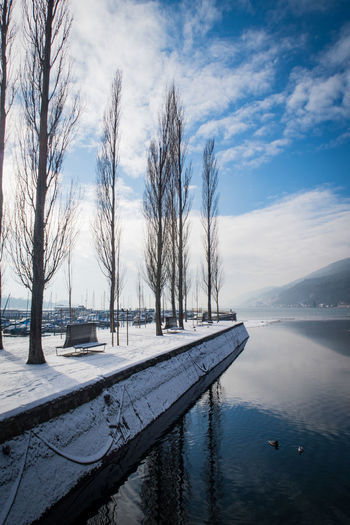 winter at lake biel Bern Biel Lake Biel Bare Tree Beauty In Nature Clouds Cold Temperature Day Europe Frozen Lake Nature No People Outdoors Scenics Sky Snow Switzerland Tranquil Scene Tranquility Tree Water Weather Winter Perspectives On Nature