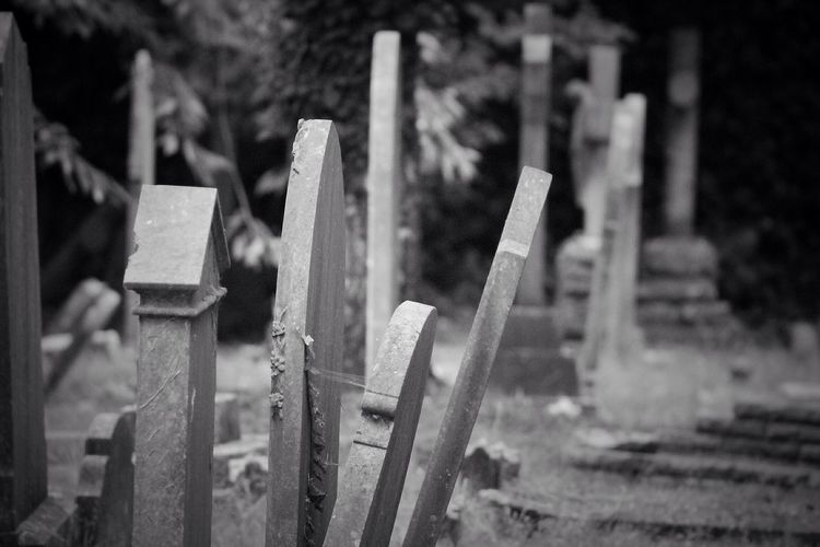 Cemetery Canon
