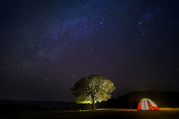 Tree and tent against sky at night