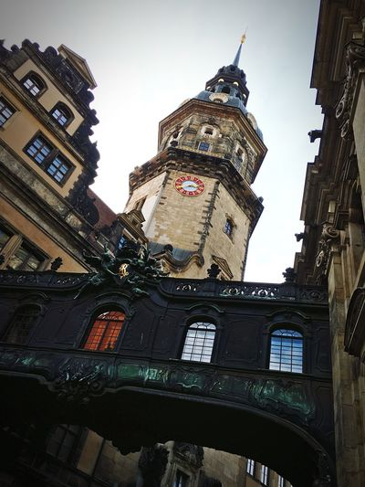 Dresden Classic.