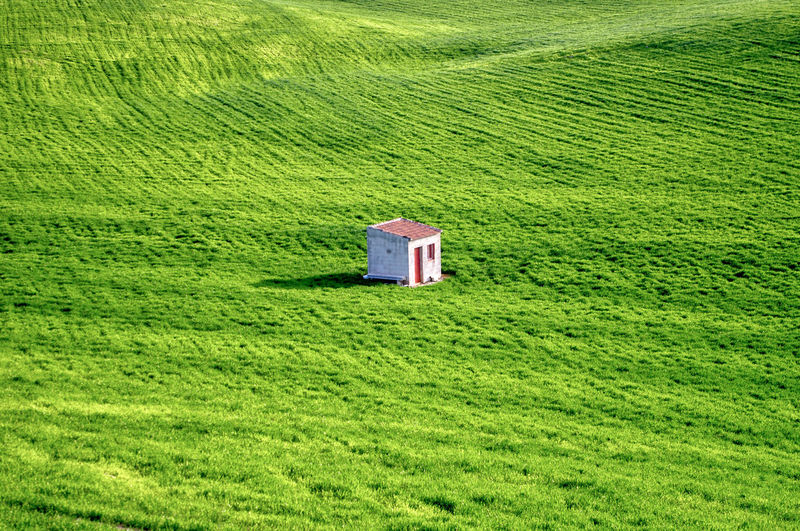 Lifeguard hut on field