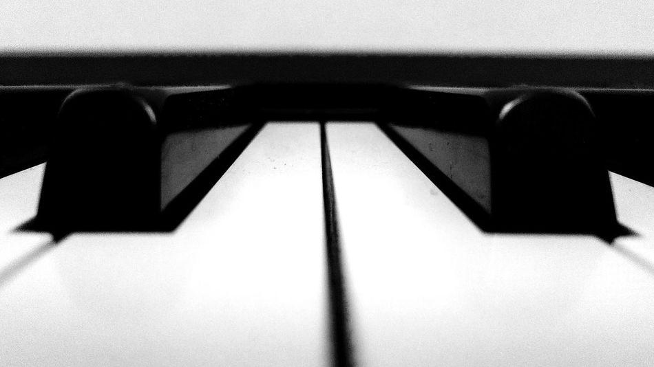 DAY15 × Piano Mapik365 Black & White Music Piano Piano Keys Minimalism Symmetry Roland