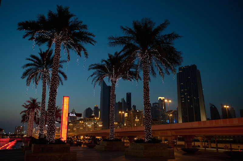 Dubai City Life