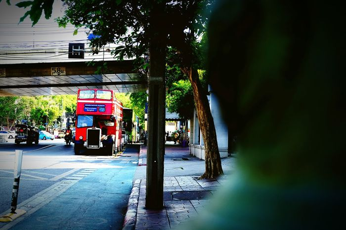 Tree Outdoors Day Bangkok Streetphotography Downtown District Travel Destinations Travel City