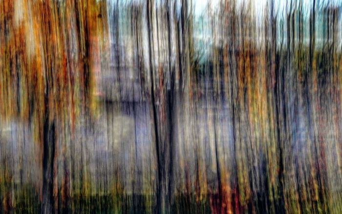 Textured  Outdoors Nature Perspectives On Nature ICM Intentional Camera Movement ICM Photo Icm Abstract Photography Beauty In Nature Abstract Treescape Rethink Things Backgrounds Details Textures And Shapes EyeEm Ready