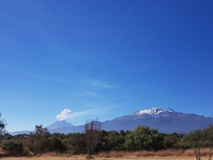 Popocatepetl Popocatepetl Mexico Central Mexico Volcano Tree Mountain Blue Sky Active Volcano Volcanic Landscape Erupting Volcanic Activity