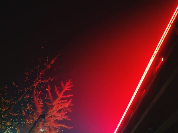 17 © Diego Lo Monaco //Red Night No People Outdoors Illuminated Sky Streetphotography Gettyimages Streetphotograph Getty Images Getty X EyeEm Getty Image-collection Rethink Things Light And Shadow Neon Sign Neon Life Neon Lights Neon Color Neonsign Shades Of Sky Shaded Shade Of Red Shade Of Purple Trees Architecture