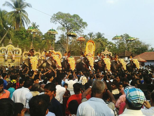 kerala festival (pooram 2016) Elephants In A Line People Enjoying First Eyeem Photo