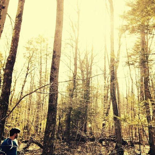 Massachusetts Woods That's Me Enjoying Life Walking In The Woods Spring