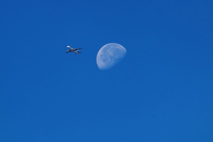 Returning From The Moon Moon_of_the_day Flying Over Your Imagination Flying High Moon Moon Shots Moon_collection Moon Surface Clear Sky Airplane Colour Of Life Taking Photos Be. Ready. Nature_collection Nature EyeEm Nature Lover EyeEm Nature Collection Nature Photography Half Moon Airplane In The Sky Flying In The Sky Flying To The Moon Decisive Moment Miles Away 3XSPUnity
