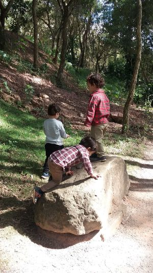 EyeEm New Here Kids Playing Rock Zoo Wild Outdoors Beauty In Nature Sunlight Greens Verde árvores EyeEmNewHere Sommergefühle EyeEm Selects