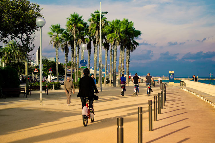 Barcelona Barceloneta Bicycle Cycling Friendship Full Length Leisure Activity Lifestyles Outdoors Real People Rear View Relaxing Rest Riding Seaside SPAIN Street Togetherness Tourism Transportation Traveling Vacation Walk Walking Weekend Activities