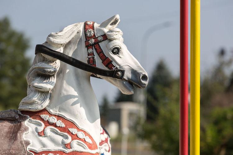 White Carousel Horse At Amusement Park