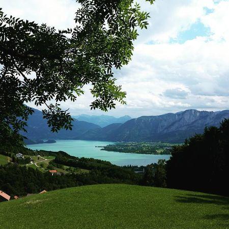 Nature Austria Oberösterreich Mondsee Lake Sea Water Clouds Green Grass Tree Blue Air Trekking Wanderlust Wandern Sport Loveit
