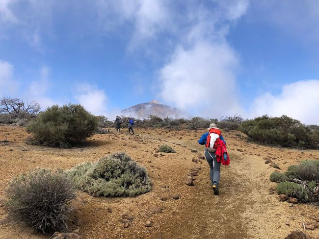 Hiking, Volcano Teide, Tenerife 🇪🇸 Nofilter Mountain Volcano Teide Mount Teide Teide National Park Cloud - Sky Clouds Tenerife SPAIN Sky Cloud - Sky Mountain Day Nature Beauty In Nature Lifestyles Leisure Activity Scenics - Nature Walking Hiking Plant Travel