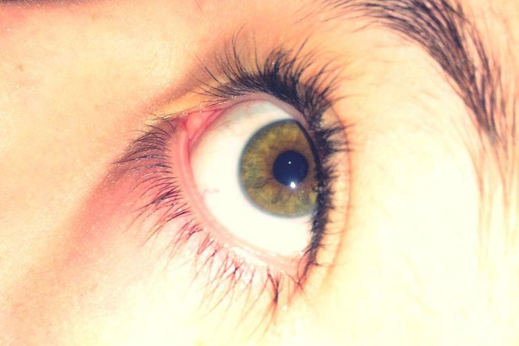 Scary Miedo Openeyes Honey Colors Meow ❤️☺️