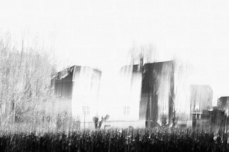 Dazed and confused. Beauty In Nature Blurred Blurred Motion Day Field Foggy Grass Grassy Growth Houses Landscape Lifestyles Nature Outdoors Plant Rural Scene Sky Tranquil Scene Tranquility Weather The Street Photographer - 2016 EyeEm Awards Fine Art Photography Pivotal Ideas BYOPaper!