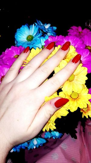 Human Hand Human Body Part Multi Colored Flower Beauty Women Fingernail Close-up Lifestyles Only Women Adult Adults Only Nail Polish People One Woman Only Cultures Outdoors One Person Nature Flower Head