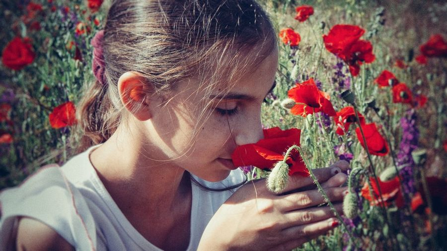 Close-Up Of Girl Smelling Red Flowers